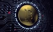 Giá Bitcoin hôm nay 7/1: Khởi đầu năm 2018 mạnh mẽ