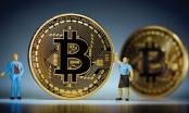 Giá Bitcoin hôm nay 9/1: Bitcoin giảm giá, kéo đàn em lao dốc