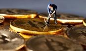 Giá Bitcoin hôm nay 27/2: Bật tăng mạnh mẽ, áp sát ngưỡng 11.000 USD