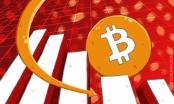 Giá Bitcoin hôm nay 15/3: Mất đáy 8.000 USD, Bitcoin chìm sâu vào khủng hoảng