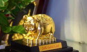 Giá vàng hôm nay 13/2: Sát ngày vía Thần Tài, giá vàng tăng vượt ngưỡng 37,30 triệu đồng mỗi lượng