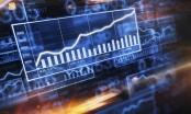 Thị trường chứng khoán ngày 21/5: Sắc xanh bao trùm thị trường