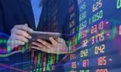 Thị trường chứng khoán ngày 11/6: Nhịp phục hồi trong ngắn hạn được giữ vững