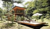 Trải nghiệm thiên nhiên hoang sơ với ngôi nhà trong rừng