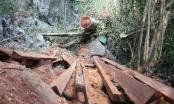 Huỷ hoại cảnh quan thiên nhiên môi trường là tội ác!