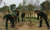 Bộ đội Biên phòng Lào Cai phát động Tết trồng cây