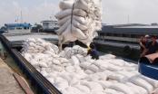Phó Thủ tướng kết luận về việc xuất khẩu gạo