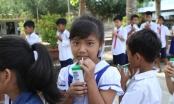 Gần 55.000 trẻ em tỉnh Trà Vinh thụ hưởng chương trình sữa học đường