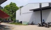 Hoài Đức, Hà Nội: Công ty Kinh doanh vật tư thiết bị sử dụng đất sai mục đích