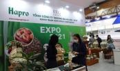 Hapro đổi mới phương thức xúc tiến thương mại tại Vietnam Expo 2021