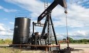 Giá xăng dầu tiếp đà lao dốc, về mức thấp nhất 6 tháng qua