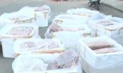 Quảng Nam: Hãi hùng với 600kg nội tạng hôi thối nồng nặc chuẩn bị đưa vào quán nhậu
