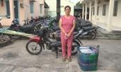 Kiên Giang: Bắt tạm giam đối tượng buôn bán thuốc lá lậu