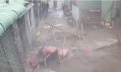 TP HCM: Sập giàn giáo công trình, 3 người bị thương nặng