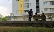 Diễn biến mới nhất vụ Chi cục trưởng Chi cục TTHADS quận Bình Tân rơi lầu tử vong