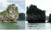 Thiên Nga trên vịnh Bái Tử Long bị... chặt đầu