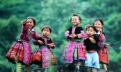Phú Thọ: Xuân về với bản người Mông