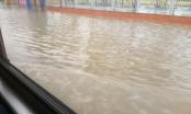 TP Hải Dương: Mưa lớn, nhiều tuyến đường ngập úng thành sông