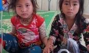 Ăn thử lá ngón, hai bé gái người Mông suýt mất mạng