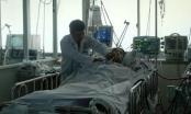 Bệnh viện Chợ Rẫy: Cứu sống bệnh nhân bị ong đốt thập tử nhất sinh