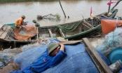 Tiền Hải (Thái Bình): Bà con oằn mình khắc phục hậu quả nặng nề do bão số 1 để lại