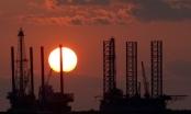 Lần đầu tiên trong năm 2016 giá dầu vượt mốc 50 USD/thùng