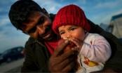 1230 người di cư được Hải quân Italia cứu sống trong 1 ngày