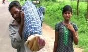 Chồng nghèo vác xác vợ đi bộ 12 km vì không có tiền thuê xe tang