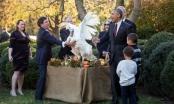 Lễ xá tội gà tây cuối cùng ở Nhà Trắng của Tổng thống Obama