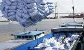 Xuất khẩu gạo sang Trung Quốc gặp khó