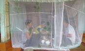 Thanh Hóa dừng tập kết rác nơi người dân phải mắc màn ăn cơm