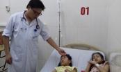 Hà Tĩnh: 9 học sinh tiểu học nhập viện vì ăn quả ngô đồng