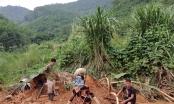 Yên Bái: Thâm nhập vào thủ phủ khai thác đá đỏ trái phép ở Lục Yên