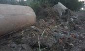 Hải Phòng: Doanh nghiệp bỗng dưng bị mất đất kêu cứu