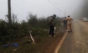 Lai Châu: Xe chở Phó Bí thư huyện lao xuống vực sâu 100m