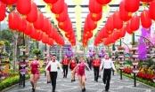"""Quảng Ninh: Độc đáo với Lễ hội """"Kỳ quan muôn sắc hoa"""""""