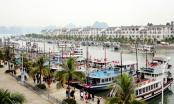 Quảng Ninh: 8 tháng đón gần 10 triệu lượt khách, thu trên 16.000 tỷ đồng