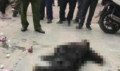 Tạm giữ hai nghi phạm đánh chết nam thanh niên nghi trộm đào về chơi tết