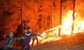 Nghệ An: Người phụ nữ tử vong thương tâm khi chống chọi với giặc lửa, cứu rừng