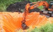 Quảng Ninh: Công an thị xã Đông Triều tiêu hủy hơn 700 kg pháo nổ