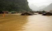 Hàng chục người thiệt mạng và mất tích do mưa lũ tại miền Trung