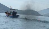 Quảng Ninh: Bàng hoàng phát hiện hai vợ chồng ngư dân chết bí ẩn trên biển