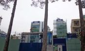 Vụ Hội sở Ngân hàng ACB 442 Nguyễn Thị Minh Khai: Có hay không chủ Ngân hàng ACB mua nhà gian dối?