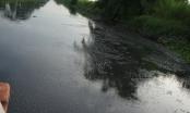 Sóc Trăng: Nghịch lý dân tố ô nhiễm gia tăng sau khi nhà máy xử lý nước thải đi vào hoạt động?