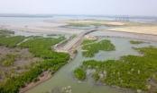 Bà Rịa - Vũng Tàu: Việc thu hồi dự án Cảng Cái Mép Hạ là chưa phù hợp Luật Đất đai?