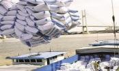 Long An, An Giang kiến nghị Thủ tướng cho cơ chế xuất khẩu lại nếp, gạo