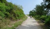 Kiên Giang: Kỷ luật 4 cán bộ liên quan đến sai phạm đất đai tại huyện Kiên Hải