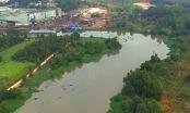 Bình Dương: Kịp thời chấn chỉnh hoạt động xây dựng ven sông tại thị xã Bến Cát
