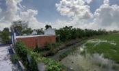 Tây Ninh: Hợp đồng chuyển nhượng đất bị vô hiệu vì khoản nợ không liên quan