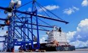 Hải Phòng: Dừng nộp phí hạ tầng cảng biển bằng tiền mặt từ ngày 1/8